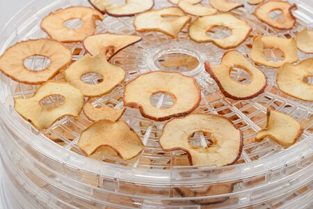 Dried apple chips on a rack of a dehydrator. Organic sweet snack made at home. Healthy eating and lifestyle. Imagens
