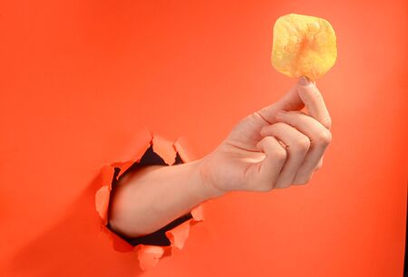 Hand holding a potato chip through a torn hole in red paper background. Delicious crunchy snack, harm of junk food.