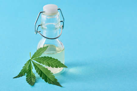 A bottle of hempseed oil and a hemp leaf on blue background with copy space 写真素材