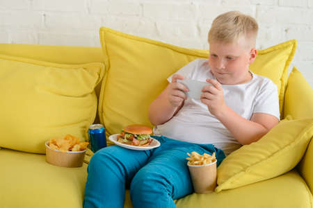 Boy playing with mobile phone, eating chips, French fries, hamburger