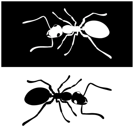 Ant, bug, insect icon vector image Иллюстрация