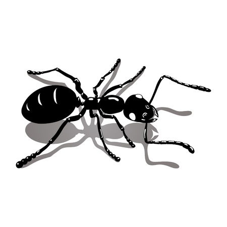 entomologist: Ant, bug, insect icon vector image Illustration
