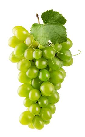 uvas: uvas verdes aisladas en el fondo blanco. Foto de archivo