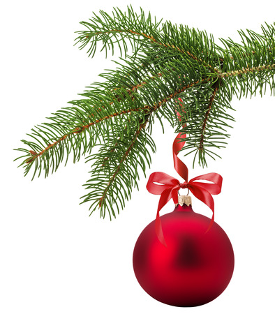 red sphere: Christmas tree branch with red ball isolated on the white background.