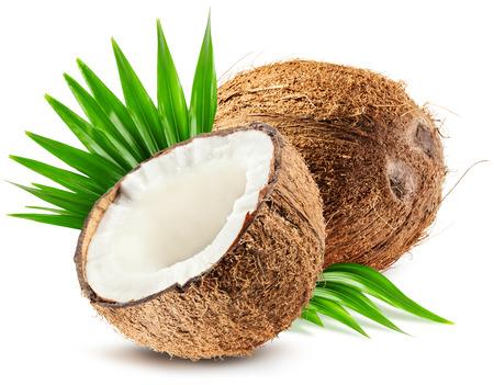 ココナッツ、白い背景で隔離の葉。 写真素材