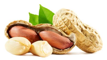 cacahuate: cacahuetes aislados en el fondo blanco.