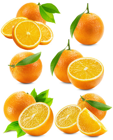 citruses: set of oranges isolated on the white background.