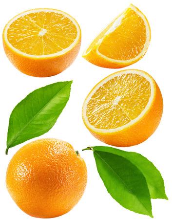 오렌지 흰색 배경에 고립의 집합입니다.