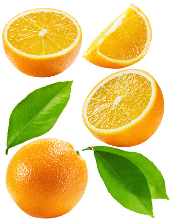 set of oranges isolated on the white background.