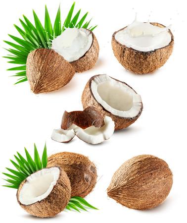 set van kokosnoten die op de witte achtergrond. Stockfoto
