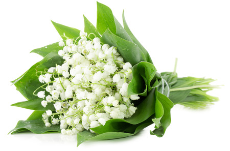 bouquet of lily of the valley isolated on white background.