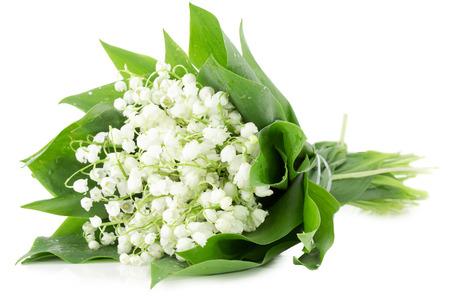 flor de lis: ramo de lirios del valle aislado en el fondo blanco. Foto de archivo