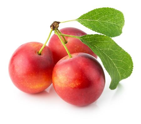 ciruelo: las ciruelas de color rojo cereza aislados en el fondo blanco.