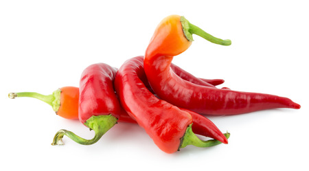 red chilly: red chilly peppers isolated on the white background. Stock Photo