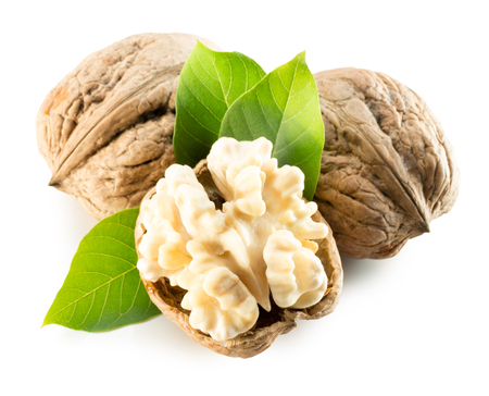 nucleus: walnuts with walnut nucleus isolated on the white background.