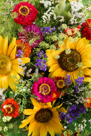 close up of colorful flowers.