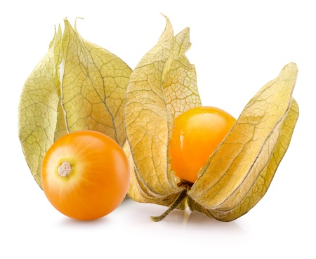 cape gooseberries isolated on the white background.