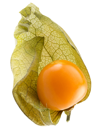 cape gooseberry isolated on a white background.