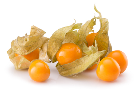 physalis isolated on a white background.