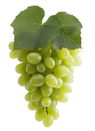 green grapes isolated on a white background. Banque d'images - 122695975