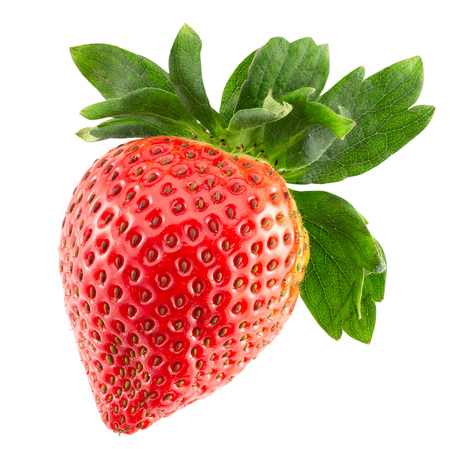 strawberry isolated on a white background. 写真素材