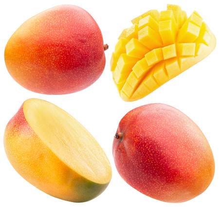 collection of mango isolated on a white background.