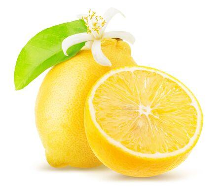 Zitrone lokalisiert auf einem weißen Hintergrund.