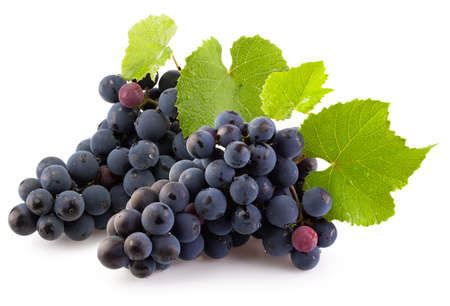 bunches of purple grapes with green leaves isolated on a white background.