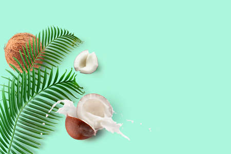 Coconuts with milk splash and green palm leaves on a mint green