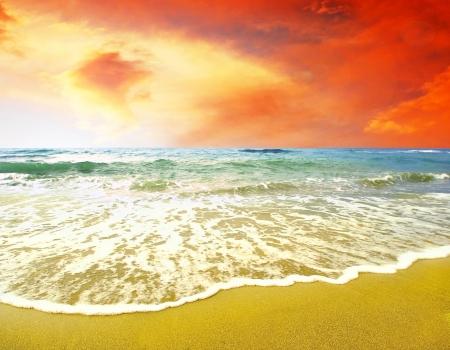 Sunny tropical beach photo
