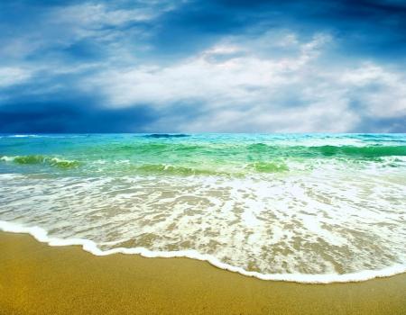 hawai: Mujeres hermosas j�venes en la soleada playa tropical en bikini