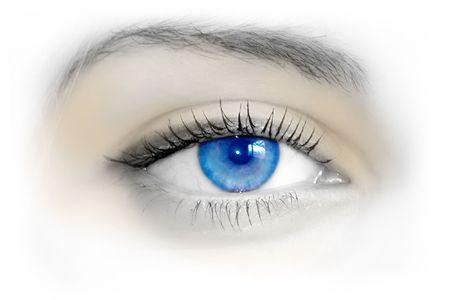 cejas: Hermoso ojo azul femenina. Macro tiroteo  Foto de archivo