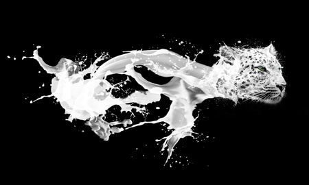 Abstract image of milk splashing drops in leopards form photo