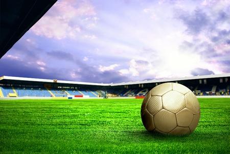 campo di calcio: Giocatore di football di felicità dopo gol sul campo dello stadio con cielo blu