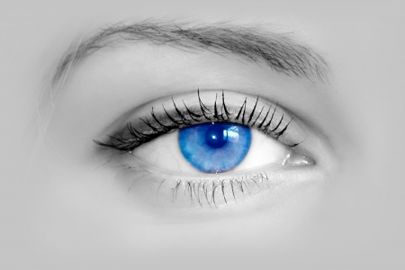 black woman face: Beautiful female blue eye. Macro shooting