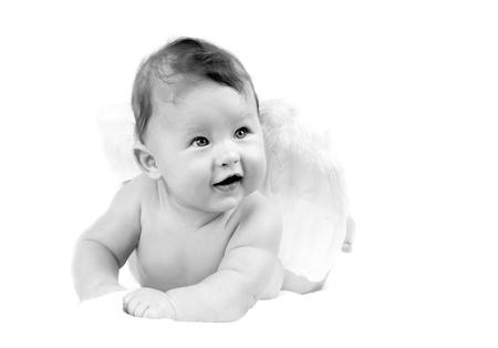 baby angel: Felicit? angelo bambino su sfondo bianco Archivio Fotografico