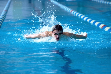 swimmer: Swimmer in waterpool swim one of swimming style