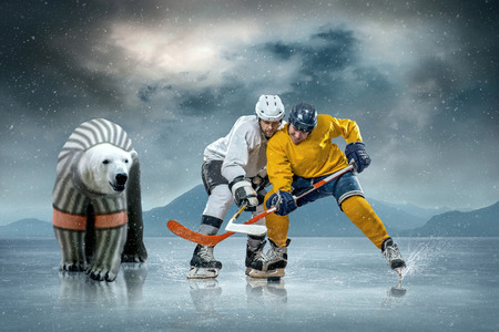 Eishockey-Spieler auf dem Eis und Eisbären Standard-Bild - 26241897