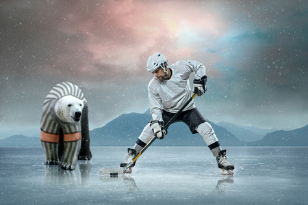 Ice hockey players on the ice and polar bear photo