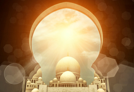 sheikh zayed mosque: Mosque of Sheikh Zayed in UAE.