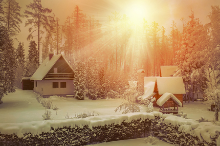 wintery day: house in winter beautiful view