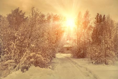 cabaña: vista de invierno hermosa en villa en la nieve en el bosque. Foto de archivo
