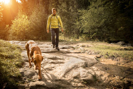 Traveler Man trekker with him dog walk around mountains in sunny day. Backpacker walking in Outdoors. Health care, authenticity, sense of balance and calmness. 版權商用圖片