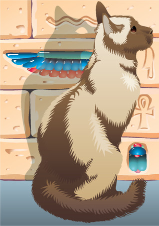 Cat on a background of the Egyptian wall with hieroglyphs. A shadow of an animal in the form of the Egyptian symbol of a cat. Illustration