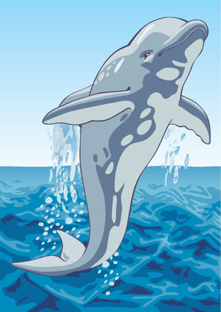 The image of a dolphin on a background of the sea. Vector