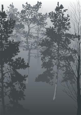 Ein Morgen Nebel im Wald.