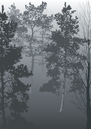 A morning fog in a wood. Vector