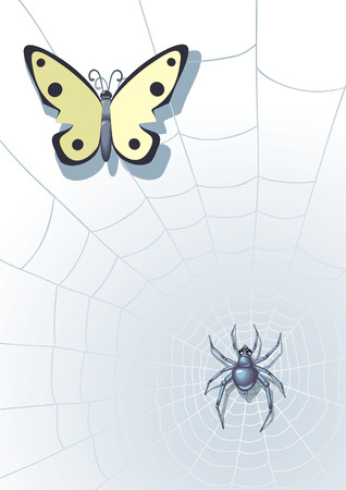 Spider in the center of a web with the butterfly. Stock Vector - 3326753
