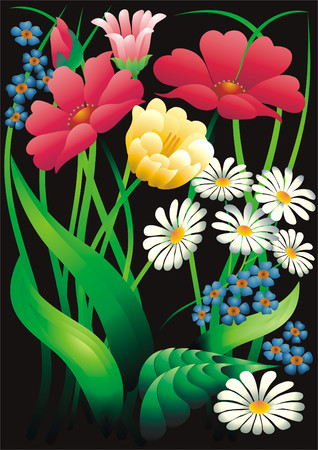 asters: Decorative panel with flowers. Illustration