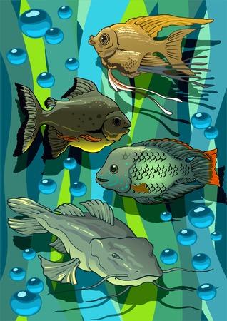 catfish: Color de la impresi�n con divertidas acuarias peque�os peces.